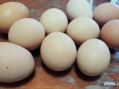 减肥期间一天吃多了 减肥期间一天吃几个鸡蛋你要的答案就在这里